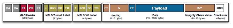 Ethernet Frame mit beigefügtem MPLS Tag